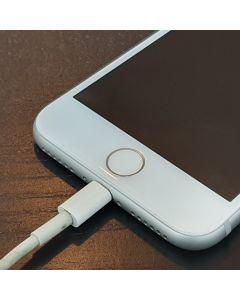 iPhone Ladebusche - USB Anschluss Reparatur